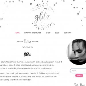 Silverglitz WordPress Theme